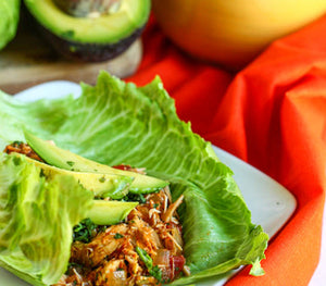 Mexican Pulled Chicken