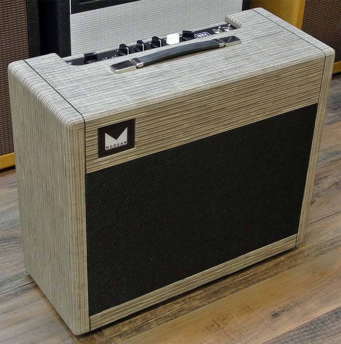 Morgan Amplification SW22R Reverb Combo Amp Driftwood