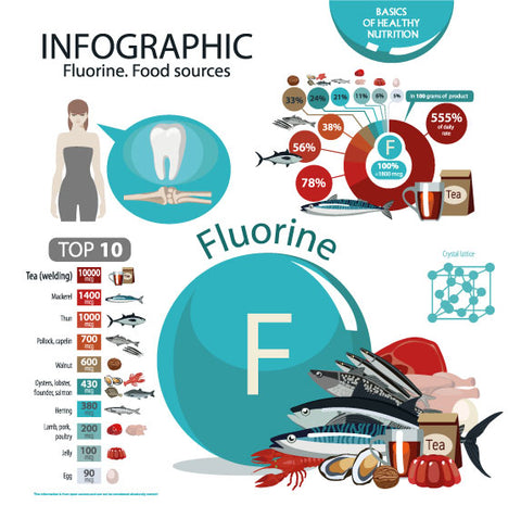 Infographic Fluorine food sources
