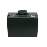 Pilot Trolley Case - Jaguar Green