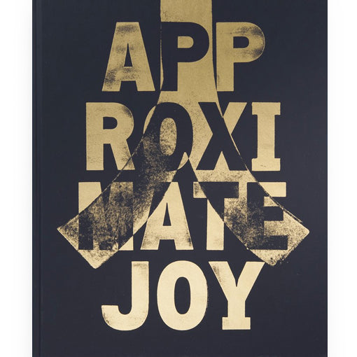Christopher Anderson: Approximate Joy