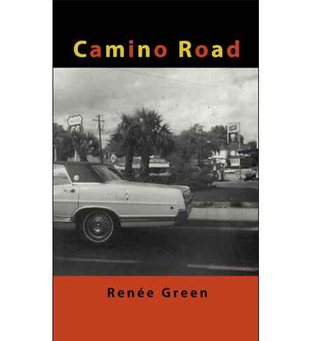 Renée Green: Camino Road