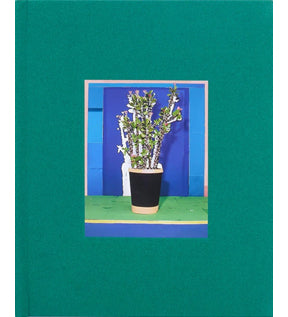 Daniel Gordon: Houseplants (Limited Edition)