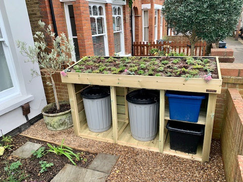 Teddington London green roof recycling & dustbin storage unit. Planting area on the roof filled with alpine plants