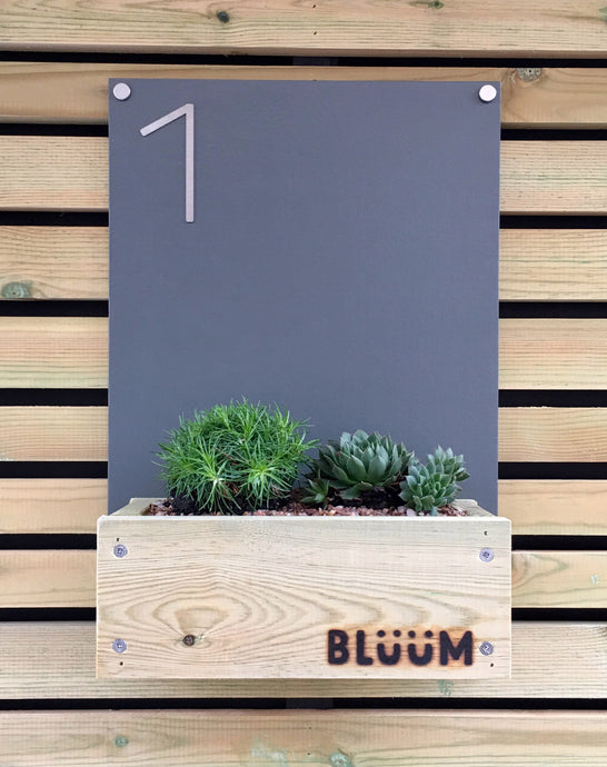 Portrait Bluum Stores modern contemporary house number sign with planter for succulents, alpines, sedum