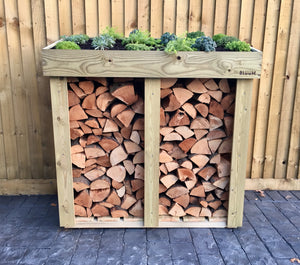 Firewood timber log storage from Bluum Stores, medium sized with a living green roof planter for succulent plants, sedum, grasses or herbs