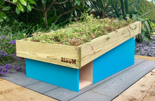 Bluum Stores hedgehog hibernation and feeding house with sedum planting living roof
