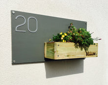 Some alpine plants in a modern contemporary house number sign