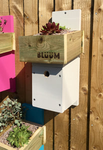 White bird nesting box with succulent plants in the roof to insulate the nest area