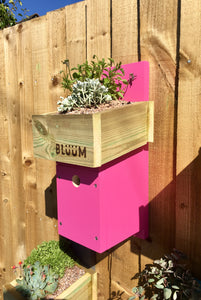 Pink bird nesting box with plants in the roof to insulate the nest area