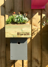 Grey bird nesting box with succulent plants in the roof to insulate the nest area