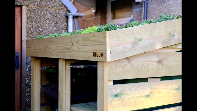 Bluum Stores wheelie bin and recycling box / food waste caddy storage unit with living green roof planter for sedum, succulents, grasses, herbs, alpine plants