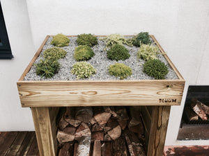 Firewood timber log storage from Bluum Stores, small sized with a living green roof planter for succulent plants, sedum, grasses or herbs