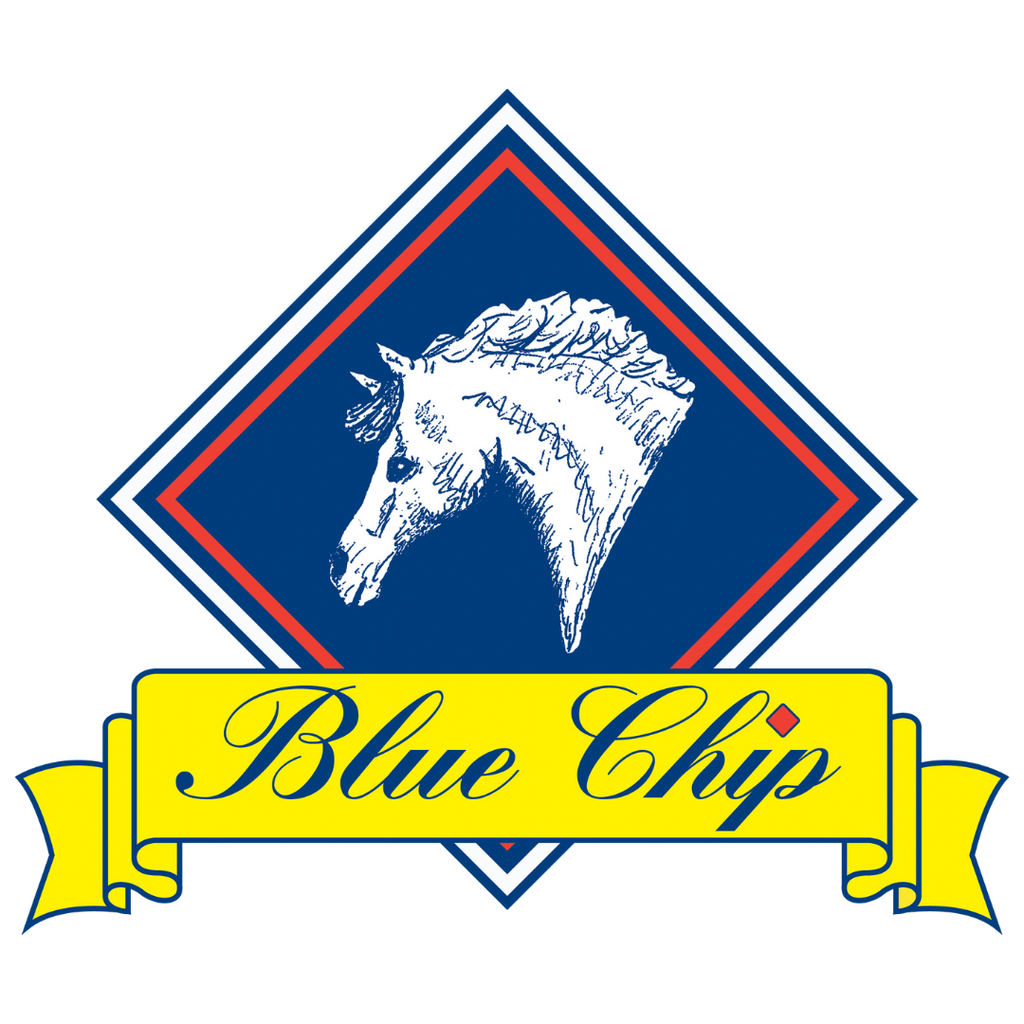2021 Blue Chip Winter Show Jumping Championships - Cancelled