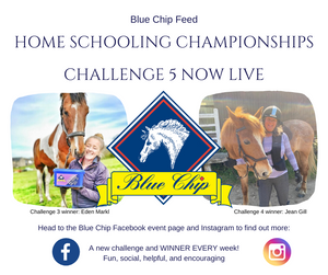 Blue Chip Home Schooling Challenges proving popular