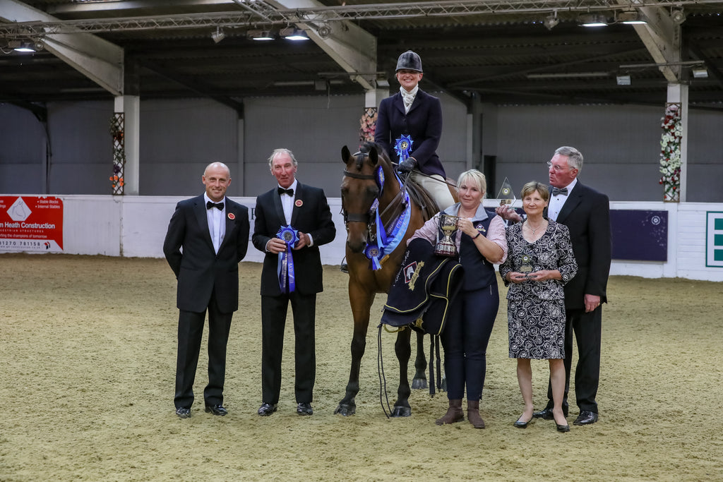 Carnsdale Irish Times WINS Blue Chip & Irish Draught Horse Society (GB) £2000 Challenge