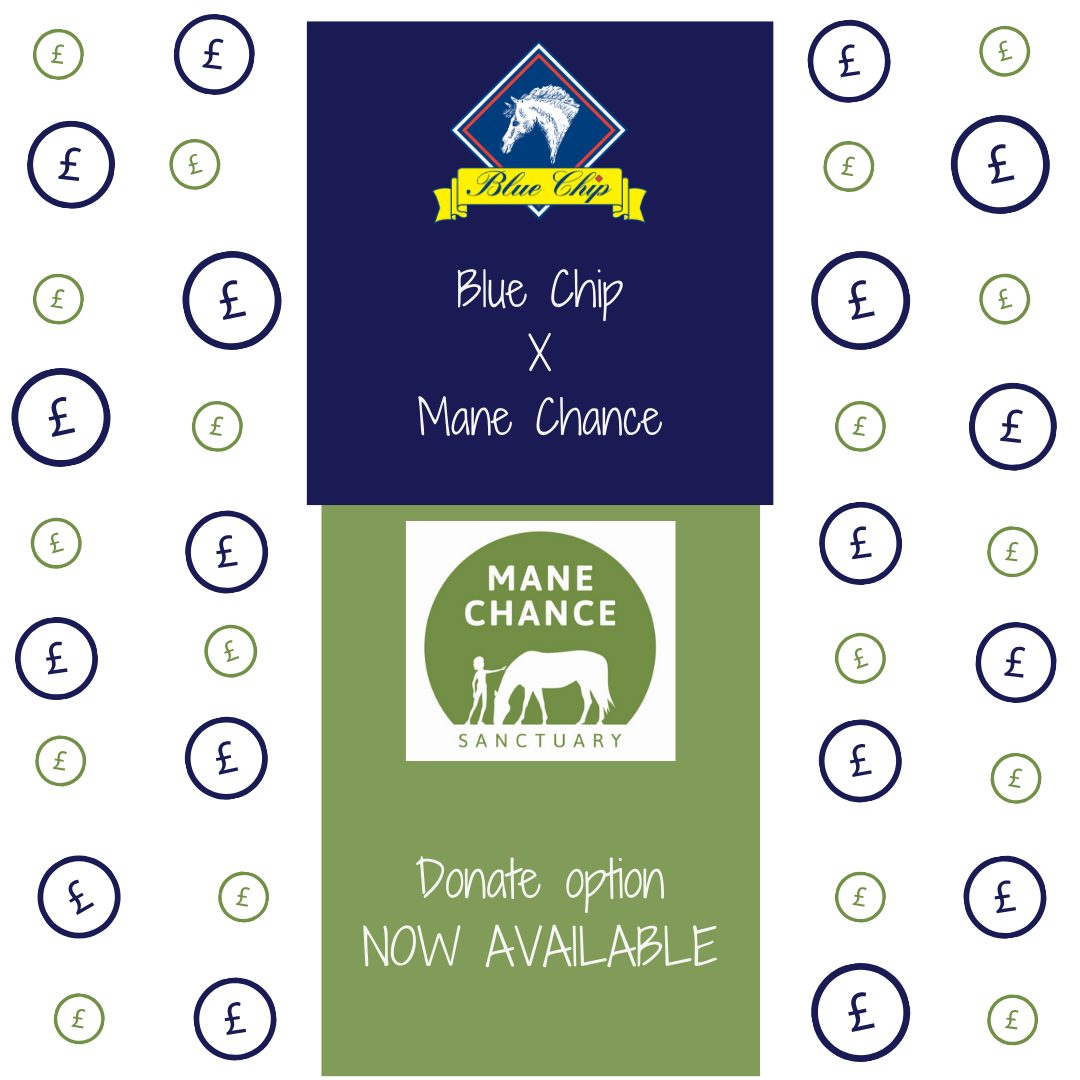 "Blue Chip customers can now ""donate"" to offer Mane Chance Sanctuary valuable support"