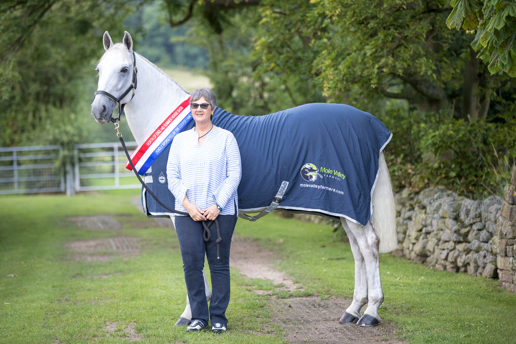 Blue Chip Founder having Show Season to remember