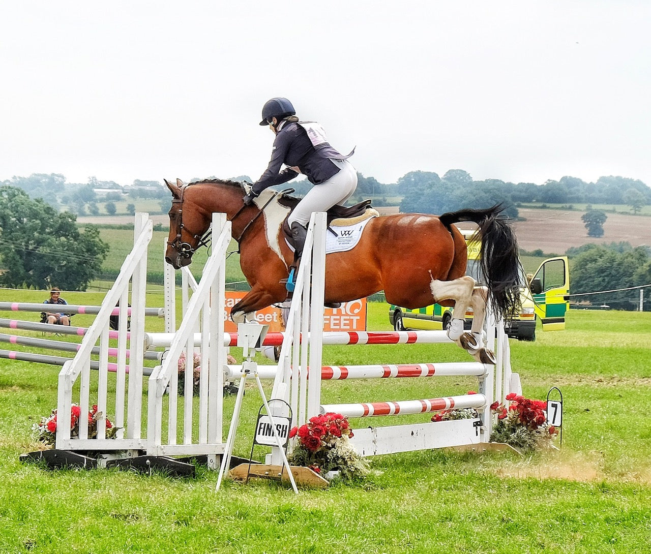 Blue_Chip_Tina_Wallace_Showjumping