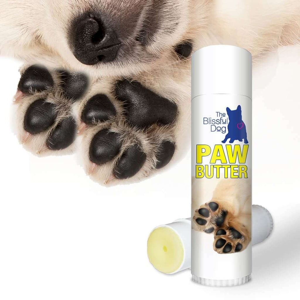 Poocheo.com: Paw Butter Tube - All Natural, Moisturizing Balm for Dog Paws by The Blissful Dog