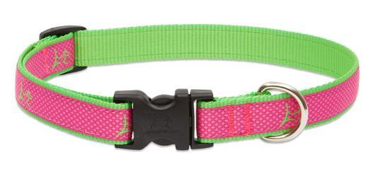 Poocheo.com: Lupine Club Collection Adjustable Nylon Collar for Dogs - Bermuda Pink