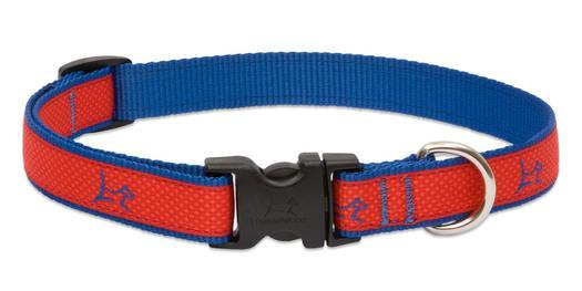 Poocheo.com: Lupine Club Collection Adjustable Nylon Collar for Dogs - Derby Red