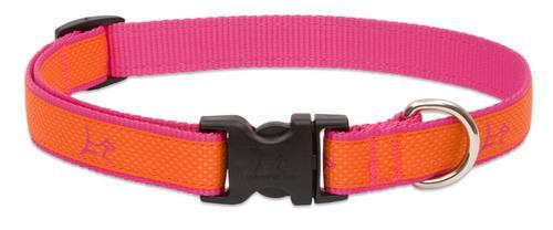 Poocheo.com: Lupine Club Collection Adjustable Nylon Collar for Dogs - Sunset Orange