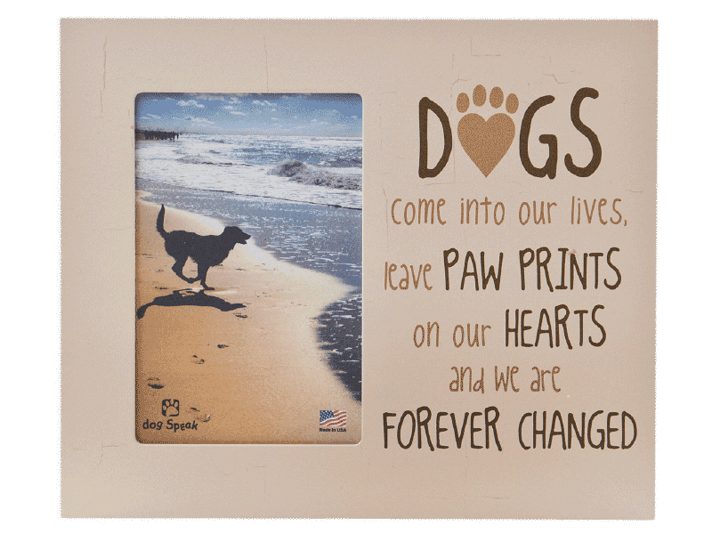 Picture Frame - Dogs Come Into Our Lives