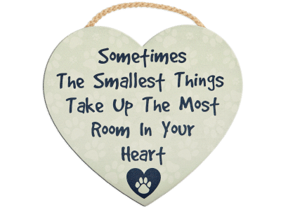 Wood Wall Sign - Sometimes the Smallest Things
