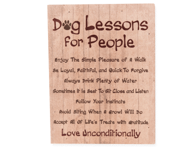 Wood Pallet Box Sign - Dog Lessons For People