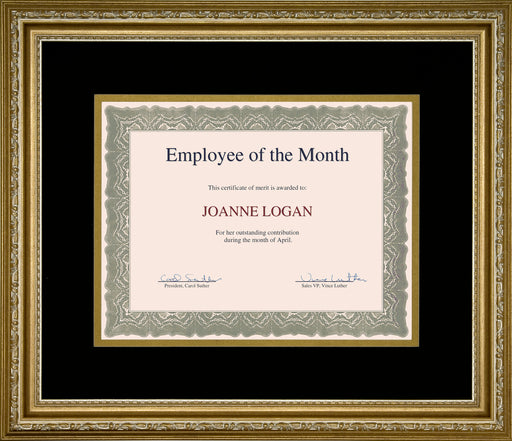 "St. James® Awards & Certificate Frame,17½ x 14¾"" (44 x 38cm),Florentine Gold w/Double Mat Black/Gold"