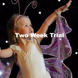 Level 2 AUTUMN 2019 - Trial