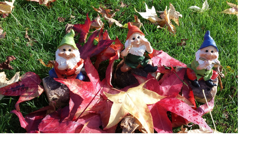 The Gnomes Are Coming!