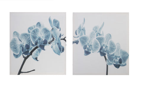 Set of 2 Canvas Art Blue Orchid - Height 30cm x Width 30cm