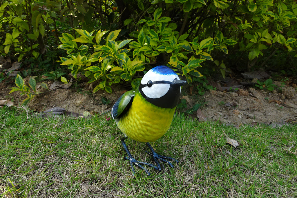 Garden Ornament Billy The Blue Tit