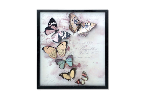 Framed 3D Vintage Butterfly Artwork