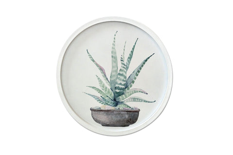 Botanica Potted Cactus Framed Artwork