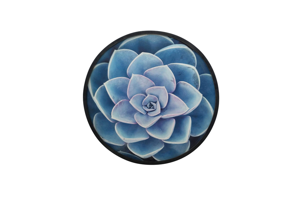Botanica Blue Cactus Round Framed Artwork