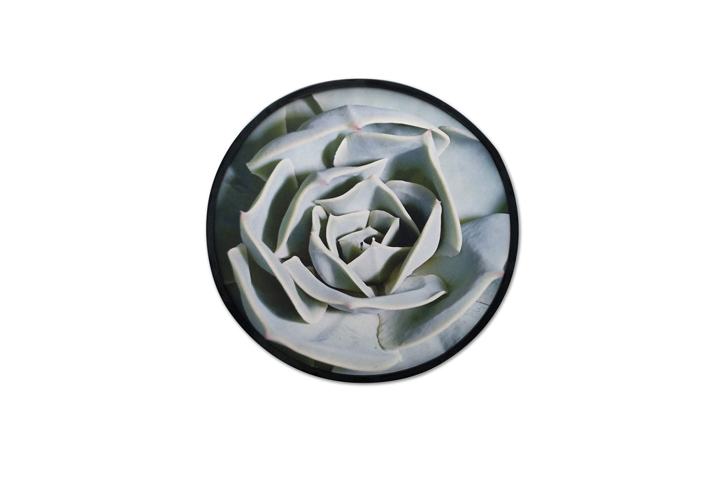 Botanica Open Rose Framed Artwork