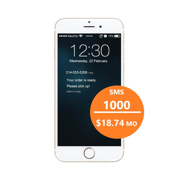 SMS - 1000/mo Text Plan (25% OFF MONTHLY PLAN!)