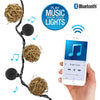 Image of Bright Tunes Indoor/Outdoor LED  Decorative Rattan Globe String Lights with Bluetooth Speakers Alt 1