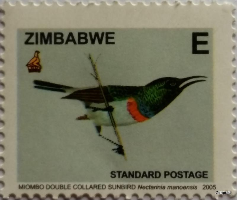 Miombo Double Collared Sunbird