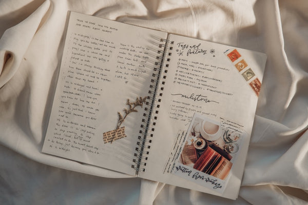 Dani's early journal spreads
