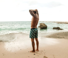 "Braunton Boardwalk Boardshort 17"" - Riz"