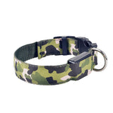 Safety Dog LED Collar - Camouflage Pattern