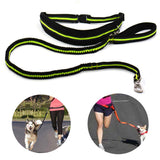 Padded Elastic Running Belt w/ Dog Leash Lead