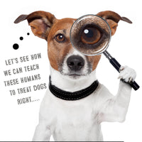 "A terrier breed looking dog with a magnifying lens on his/her left eye. With a caption ""Let's see how we can teach these humans to treat dogs right...."""