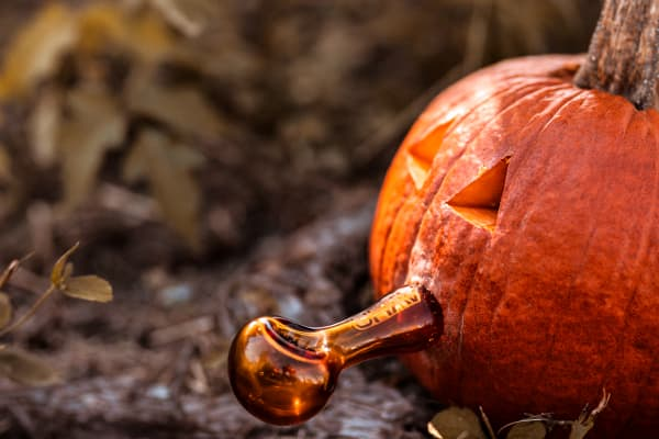 Pumpkin Pipe