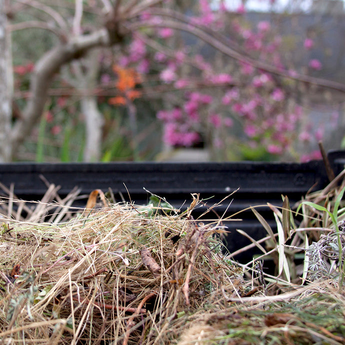 This weekend:  How to compost at home