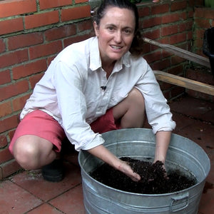 COVID and gardening:  Preparing for extra time at home